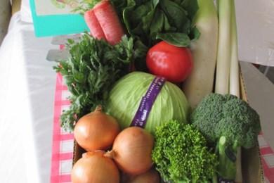 A-9 日立市産 新鮮野菜セット