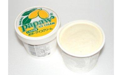 B-10 ポポーアイスクリーム詰め合わせ