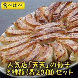 BB01_天天の大人気餃子3種類セット!天天餃子・スタミナ餃子・水餃子(各20個)