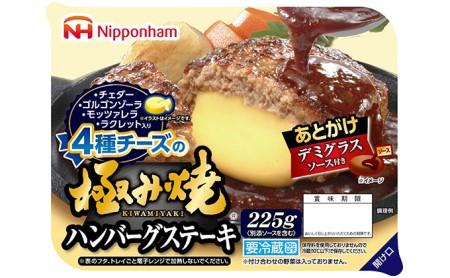 極み焼き4種チーズハンバーグセット