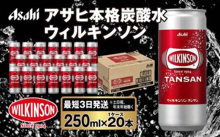 人気炭酸水ウィルキンソン250ml×20本(1ケース)