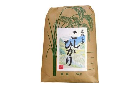 令和元年産  茨城コシヒカリ5kg【白米発送】