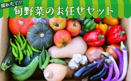 旬野菜のお任せセット