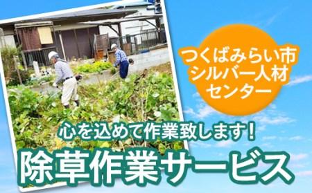 【2620-0133】除草作業