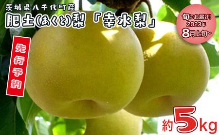 D-1 肥沃な土地が育てた八千代町産 「幸水梨」 5kg