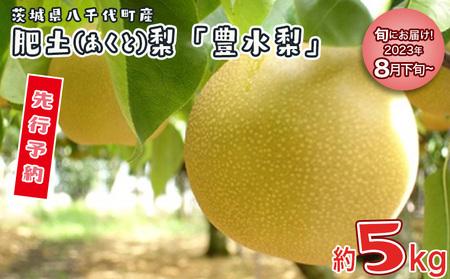 D-2 肥沃な土地が育てた八千代町産 「豊水梨」 5kg
