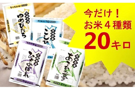 1044【平成30年産】茨城県のお米4種食べくらべ20kgセット(道の駅さかいオリジナルセレクション)