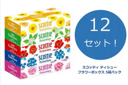 1100【境町スタンプ会推奨】スコッティティシュー160組 (60箱)