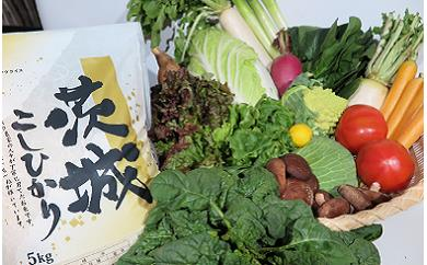 (578)新鮮野菜を盛り沢山&茨城県産コシヒカリ5kgセット