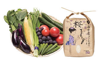 J003季節の恵み栃木市農産物セレクションBOX①【20p】