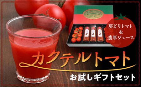 【カクテルトマト】お試しギフトセット
