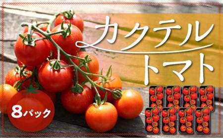 第44回農林水産祭内閣総理大臣賞受賞【カクテルトマト】房どり8パック