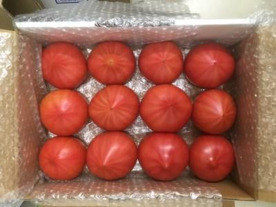J042 絶品!昔懐かしい味のトマト