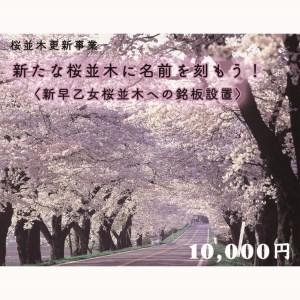 【ふるさと納税・クラウドファンディング】新たな桜並木に名前を刻もう!〈新早乙女桜並木への銘板設置〉10,000円