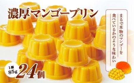 【2630-0016】濃厚マンゴープリン