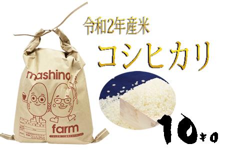 【令和2年産】羽生市産コシヒカリ10kg