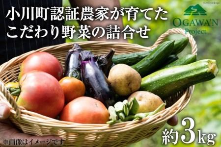 No.135 OGAWA'N 野菜セット / 農産物 やさい 詰合せ 旬<JA埼玉中央>【埼玉県小川町】