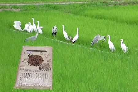 【2622-0028】【新米】無農薬 生き物いっぱいの田んぼでとれたお米コシヒカリ(白米)4.5kg