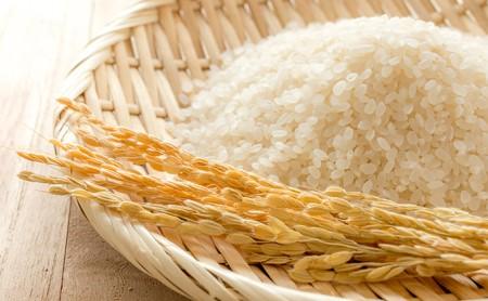 JAきょうわ米  ななつぼし5kg