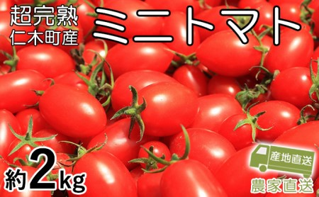 超完熟ミニトマト【アイコ】お試し2kg(1kg×2箱)