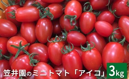 [№5613-0037]<くだものの笠井園>ミニトマト「アイコ」約3kg