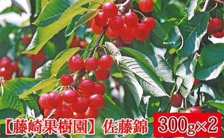[№5613-0041]藤崎果樹園のさくらんぼ【佐藤錦】300g×2