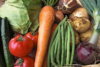 1-7 8品目の野菜セット