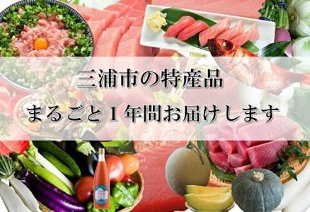100-9三浦市をまるごとお届け!【限定50件】