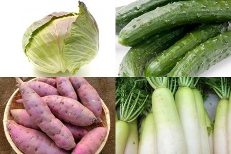 2-1三浦旬の野菜セット (お好きな時期に年2回発送)