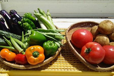 1-14夏野菜の詰め合わせとみやこかぼちゃ(こだわりの一番果)