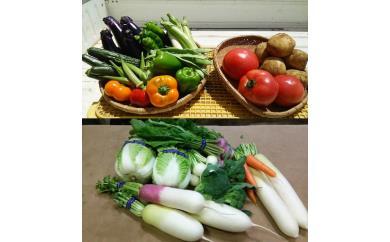 1-16季節の野菜詰め合わせ(7月と12月の2回発送)