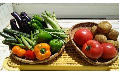 1-17ボリューム満点!季節の野菜詰め合わせ(夏)