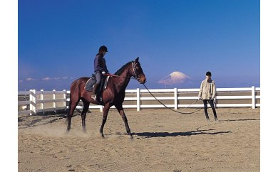 1-62乗馬体験