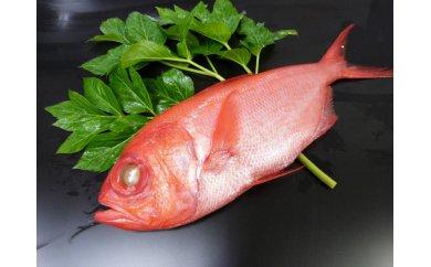 3-40【三崎水揚げ】金目鯛2匹+味噌漬&粕漬け欲張りセット