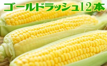 [№5820-0200]旬菜みのりファーム ゴールドラッシュ 12本