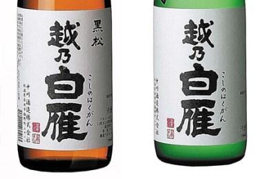 001-028E11 純米大吟醸、黒松