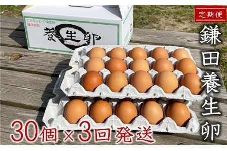 [B354]【定期便】鎌田養生卵 30個 ×3ヵ月