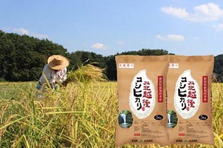 D04 【令和2年産米!】JA北越後コシヒカリ(特別栽培米)