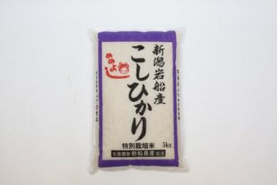 A-14 (平成28年産米)特別栽培米岩船産コシヒカリ 5kg