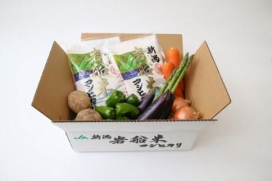 A-17 (新米)岩船米コシヒカリと季節の野菜セット①