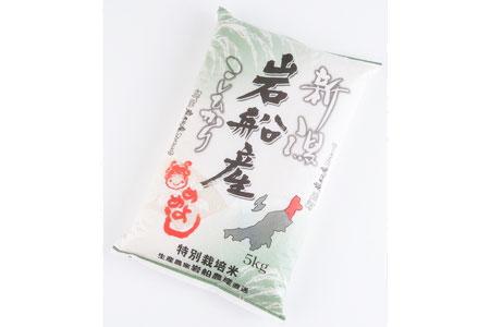 A323 特別栽培米岩船産コシヒカリ5kg
