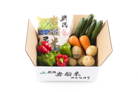 A4031 岩船米コシヒカリと季節の野菜セット①