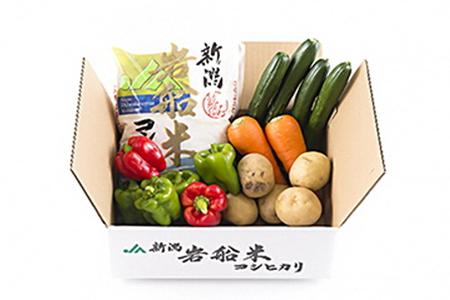 A118 岩船米コシヒカリと季節の野菜セット1