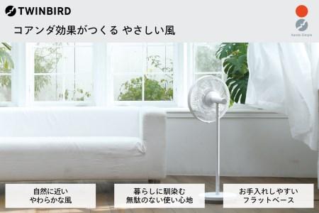 【換気】コアンダエア (EF-E981W)
