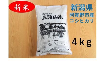 A-26.阿賀野市産コシヒカリ 五頭山系 5kg