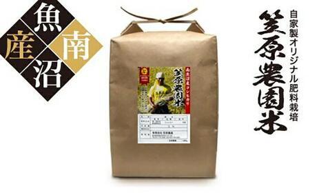 【頒布会】南魚沼産 笠原農園米 コシヒカリ(5kg×全6回)
