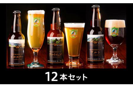 0161 【国内最高賞 受賞】胎内高原ビール 12本セット