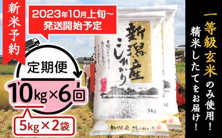 31-106【6ヶ月連続お届け】新潟県産コシヒカリ10kg(5kg×2袋)