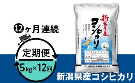 23-K05Z【12ヶ月連続お届け】新潟県中条産コシヒカリ5kg
