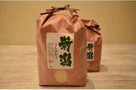 ≪アイガモさんとつくりました≫新潟県聖籠産有機米コシヒカリ5kg(令和2年産)